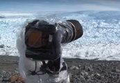 Mira lo que captó una cámara instalada en glaciar de Groenlandia