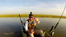Kayak Fishing: Redfish Goes Nuts in the Reeds