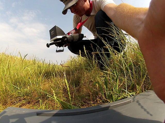 Contrôle d'un nid de Busard Saint-Martin par un drone le 5 juillet 2015