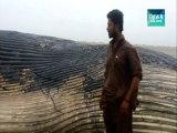 Dead Whale at Sea View Beach  Karachi