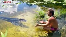 'Gator Whisperer' Swimming With Gators VIDEO - 'Gator Whisperer' Charged With Harassing Reptiles