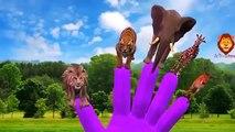 ANIMALS FINGER FAMILY Rhymes - Cartoon Animals Finger Family Nursery Rhymes