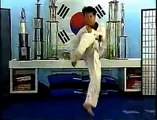 Tae Kwon Do Kicking DVD Preview
