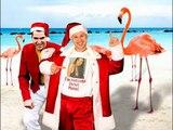 """""""Patrulių nauja Kalėdinė daina  """"Flamingų Kalėdos"""