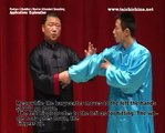 Application Explanation For Posture2 Of Chen Style Taichi Qu