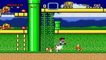 Dakira sur Mario vs. Bowser and Mighty No. 9 (Hack Super Mario World) (09/07/2015 14:44)