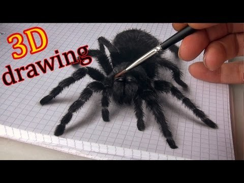 Watch Kids Freak Out at 3D Spider Drawing | Anamorphic 3D Illusion