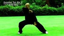 Tai chi combat tai chi chuan fight style use chen tai chi – lesson 2