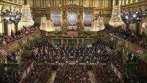 Johann Strauss Vater - Radetzky Marsch (Vienna 2011 New Year Concert)
