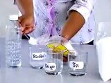 Experiment Biology: Osmosis in Plant Tissues | biology experiments high school, | biology lab
