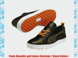 Puma Monolite golf shoes Chestnut / Black Coffee /