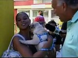 Pet Hotel Dog Life - SPTV 1ª edição - Hotel para cães - 30.12.11