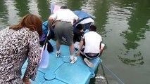 Course de baignoires du dimanche 5 juillet 2015 à Pavillons-sous-Bois