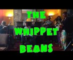 the whippet beans - 'bring back diana' live at loco (song for lady diana)
