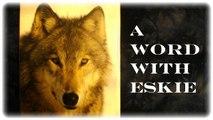 Eskie's Vlog 071115: A Sears Stereo Clock Radio