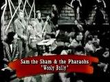sam the sham& the pharaohs- wooly bully