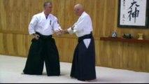Aikido Instruction - William Gleason Sensei Aikido Seminar - sample clip