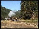 "Mocanita ""Mariuta"" (764-211) Steam Locomotive Arrives in Faina (CFF Viseu)"