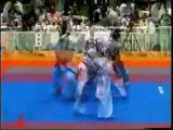 Kyokushin-kan karate shinken shobu kumite (knockdown tournament with face punches)
