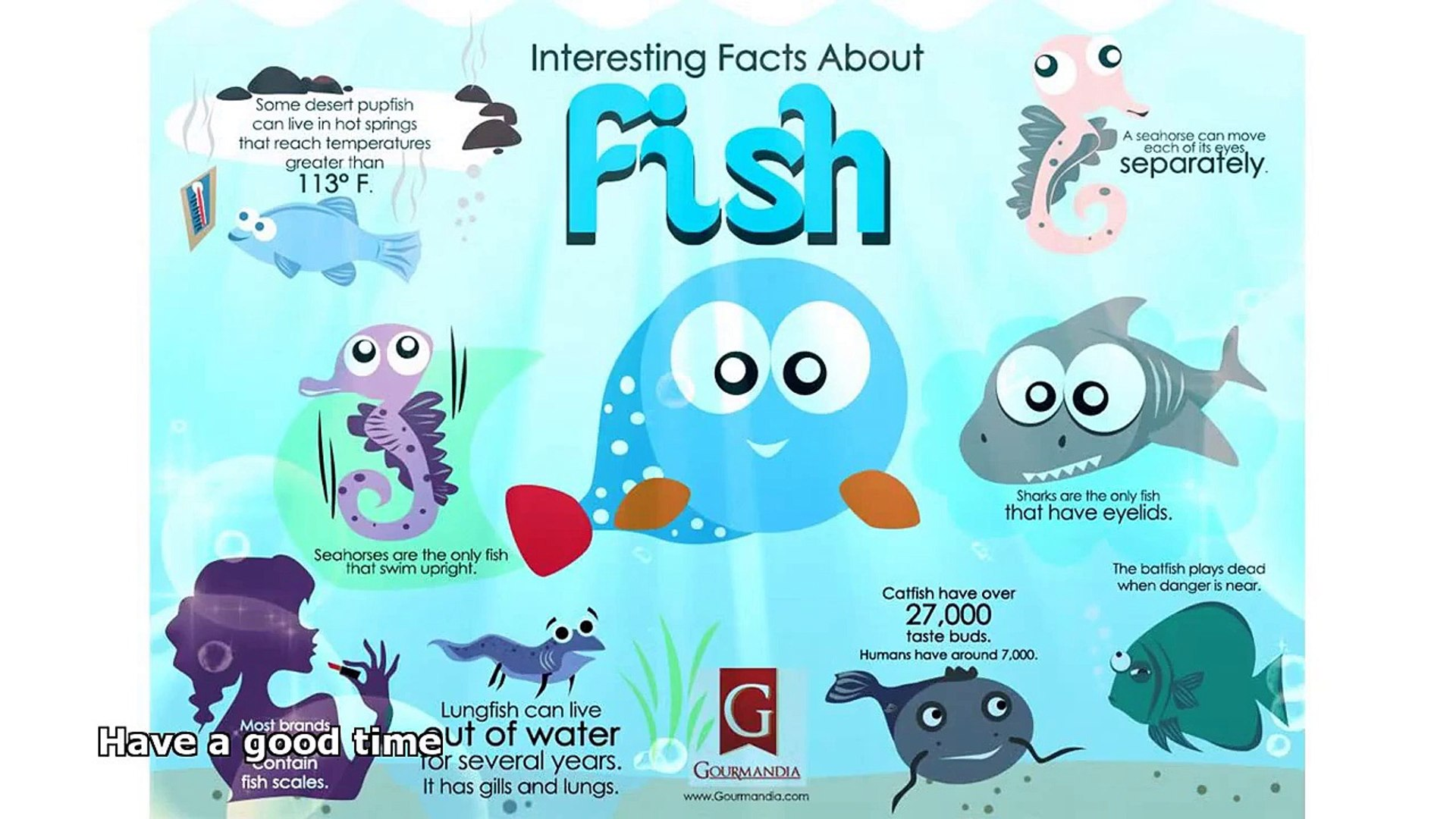 fish facts