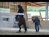 Superbe chute de cheval !
