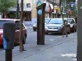 SCAN VC DA LIVE GRAFFITI - MONTREAL GRAFFITI BOMBING