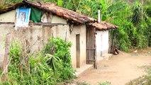 Cajas Rurales y Mecanismos de Incentivos