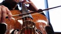 Bach | Suite N°1 in G Major - Sarabande | Christian Poltéra
