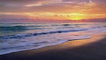 SANIBEL | CAPTIVA ISLAND Blind Pass Beach #31 Florida Beaches Ocean Wave Sounds Best Sunset Waves