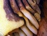 Натуральные продукты питания     SPB-TENTORIUM.RU