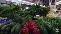 Dr Oz Vegan Health Advice Weight Loss Diet Tips Vegetarian Mehmet PCRM Doctors Biggest Loser Jenny