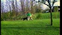 Un chien arrose son maître avec un arrosoir de jardin