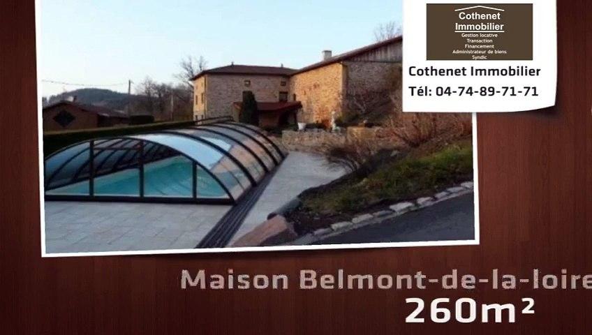 Vente - maison - Belmont-de-la-loire - 260m²