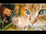 Warrior Cats - Complicated