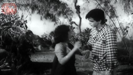 Daag (1952) - Full Length Movie - Dilip Kumar, Nimmi, Usha Kiran