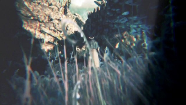 Bloodborne Trailer - Playstation 4