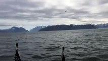 Ces 2 pêcheurs filmaient la mer avant de faire une étrange rencontre et de vivre le plus beau moment de leur vie !