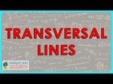117- CBSE Class VI Maths,  ICSE Class VI Maths -  Transversal lines