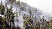 Orman Yangınları ve Alo 177 Orman Yangın İhbar Hattı Kamu Spotu