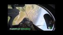 JF 17 Thunder Cockpit View  - Paris Air Show 2015  - Pakistan Air Force