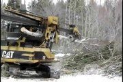 Not out of the woods - Logging industry observers expect a wave of layoffs in Maine