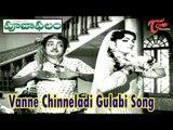 Pooja Phalam Songs   Vanne Chinneladi Gulabi Song   ANR   Savitri   Jamuna