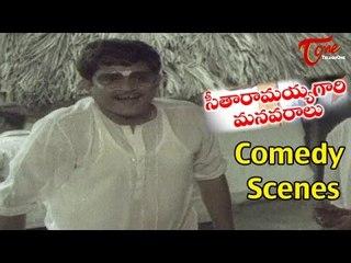 Seetharamaiah Gari Manavaralu Comedy Scenes | Back to Back | Akkineni Nageswara Rao| Meena