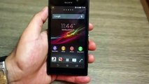 Sony Xperia C3 and C3 dual D2502, D2533, S55u, S55t