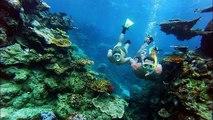 Great Barrier Reef, Australia — Tourism, Travel, Tourist attraction, Best Views