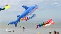 Cerf-volant acrobatique : 13e festival A Tout Vent en Vendée