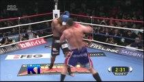 Alistair Overeem vs. Peter Aerts - K1 2010 Final Fight 1080p