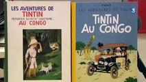 """Belgique: """"Tintin au Congo"""" au tribunal"""