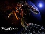 Starcraft Remix Rammstein DuHast
