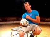 Le cirque Lydia Zavatta : Steeve Caplot, présente ses bébés tigres